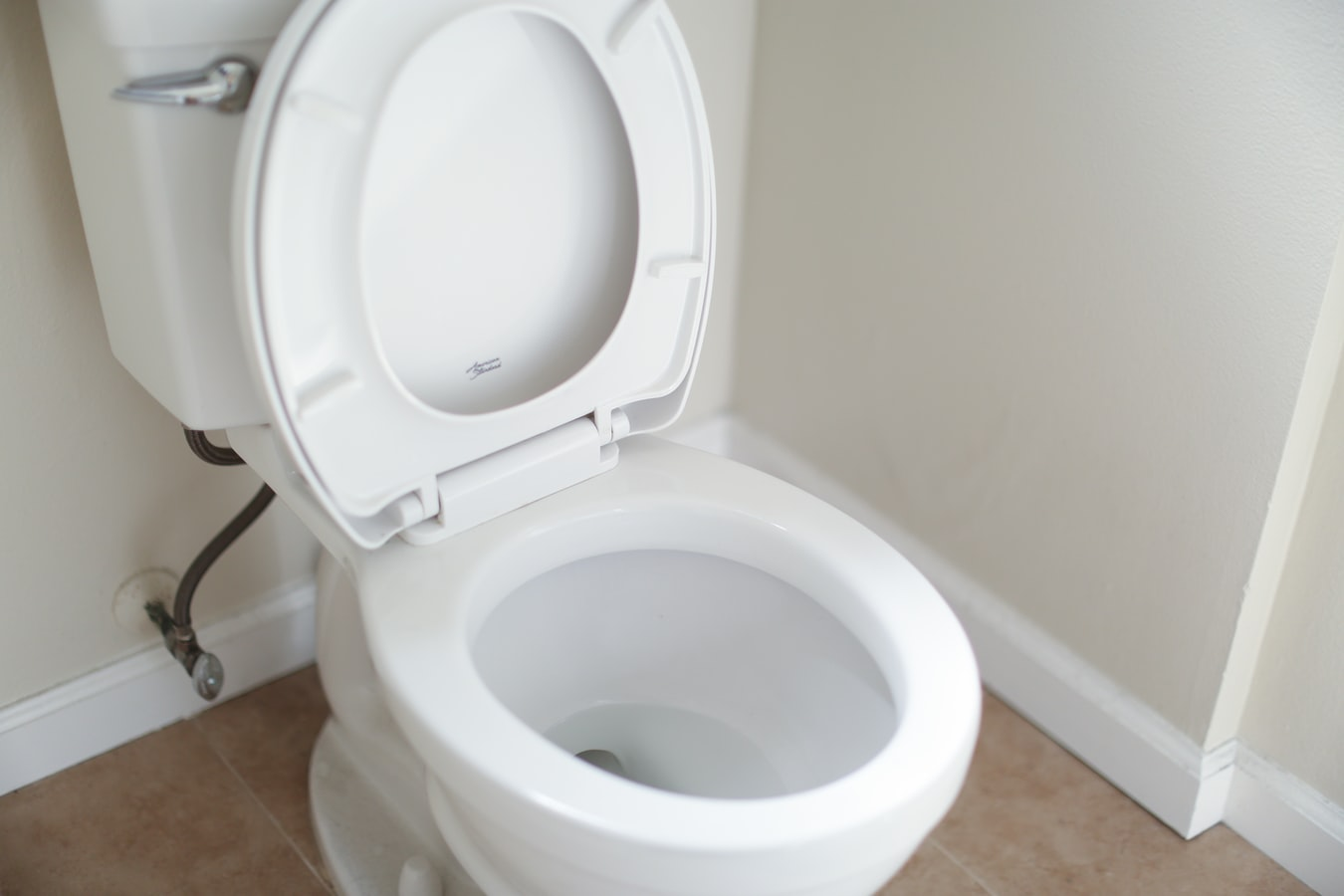 Toilet Removal